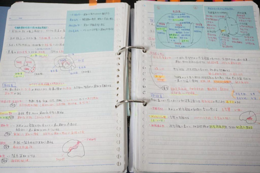 理学療法士 勉強